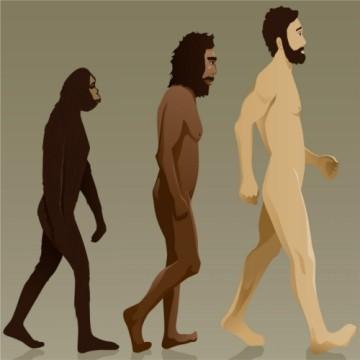 evolucion-humana.jpg