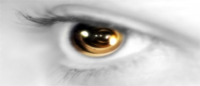 20110902miopia.jpg